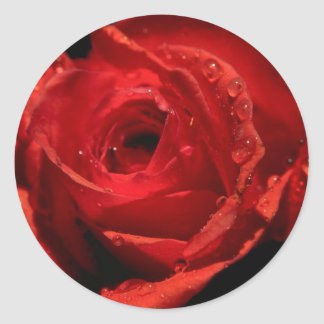 Valentine s Day Stickers