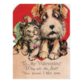 Valentine Why All The Fuss? Postcard