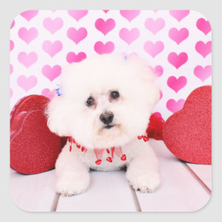 Valentines - Bichon Frise - Lilly Square Sticker