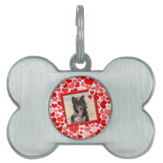 Valentines Border Collie Dog Hearts Pet Tag