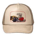 Valentine's Boxer puppy hat