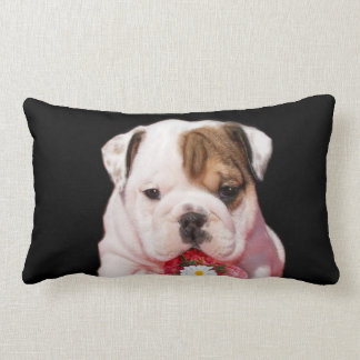 Valentine's bulldog American Mojo Lumbar Pillow