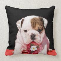 Valentine's bulldog American Mojo Throw Pillow