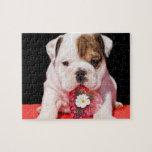 Valentine's bulldog puppy jigsaw puzzles