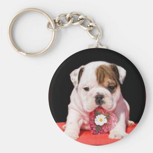 Valentine's bulldog puppy keychain