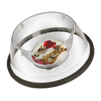 Valentine's chihuahua dogs pet bowl