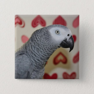 Valentine's Day African Grey Parrot Button Pin