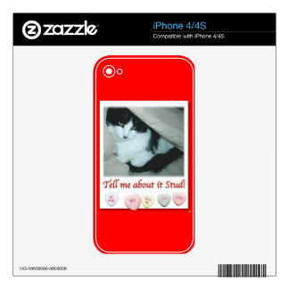 Valentine's Day Black and White Cat iPhone 4 Skins