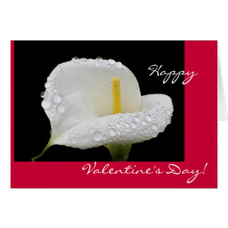 Valentine's Day - Calla Lily and dew drops Card