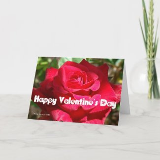Valentine's Day Card (9) - Personalize/Customize card