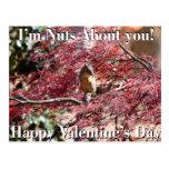 Valentine's Day Card for school Postcard