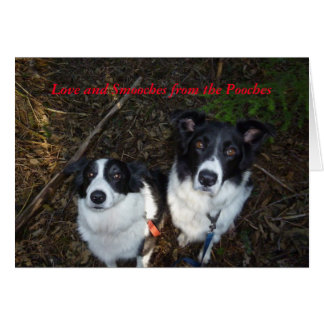 Valentine's Day Card from the Dogs