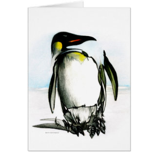 Valentine's Day Card: Penguin Drawing Card