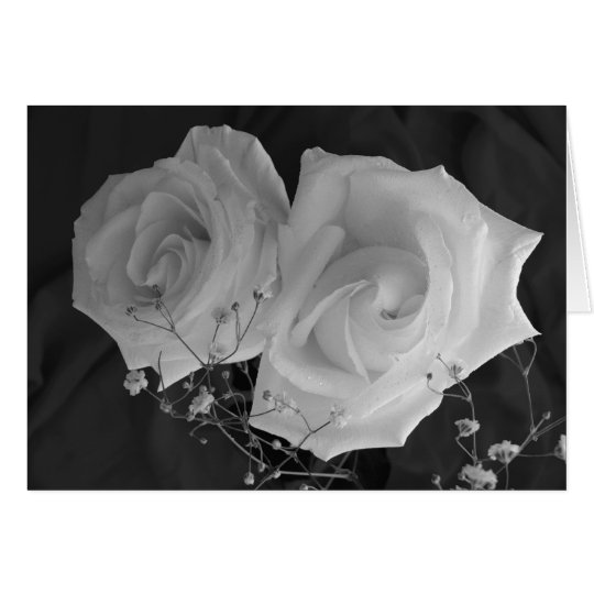 Valentine's Day card - White Roses