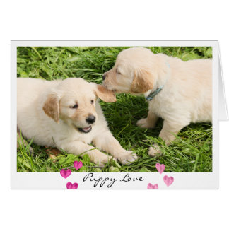 Valentine's Day Cute Dogs Puppy Love Card