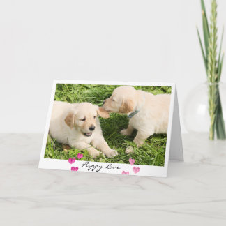 Valentine's Day Cute Dogs Puppy Love Holiday Card