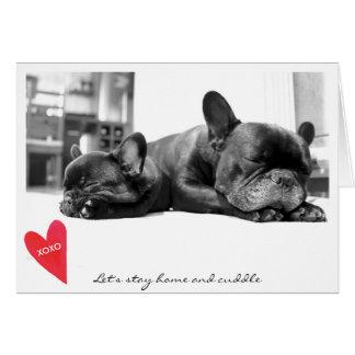 Valentine's Day Cute French Bulldog Photo Cuddle Card