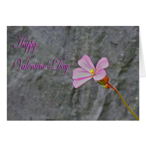 Valentines Day delicate Pink flower and Stone Greeting Card
