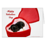 Valentines Day Doxie Card
