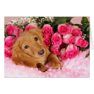 Valentine's Day from the Dog Card