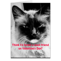 Valentine's Day Funny Cat for Friends Card