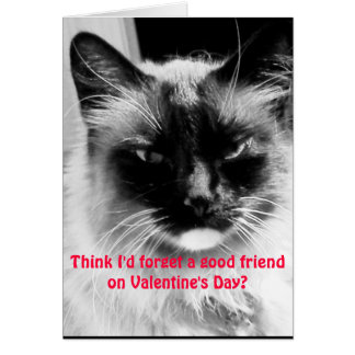 Valentineu0026#39;s Day Funny Cat For Friends Card