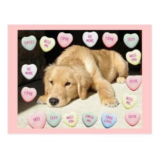 Valentine's Day Golden Retriever Postcard