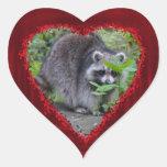Valentine's Day Greeting - Shy Raccoon Sticker