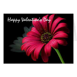 Valentine's Day Greetings Card