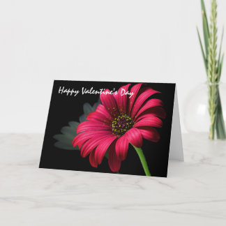 Valentine's Day Greetings Holiday Card