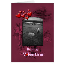 Valentines Day Inquisitive Sheep Card