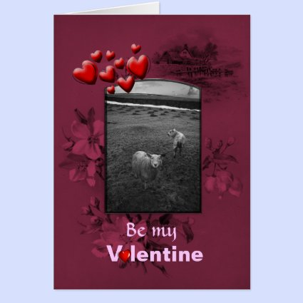 Valentines Day Inquisitive Sheep Greeting Card