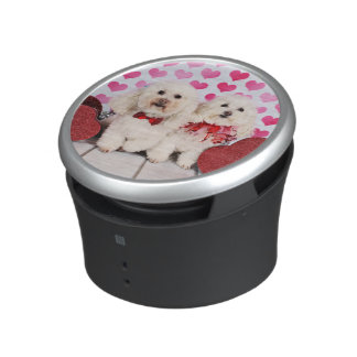 Valentine's Day - Kirby & Shelby - Poodles Speaker