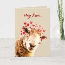 Valentine's Day Love Ewe  Funny Sheep Animal Humor Holiday Card