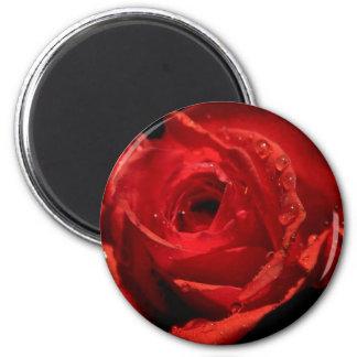 Valentine's Day magnet