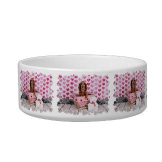 Valentine's Day - Mollie - Dachshund Bowl