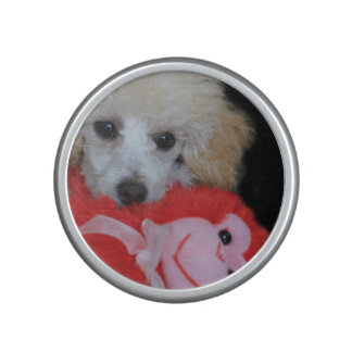 Valentine's Day Poodle  Dog Speaker