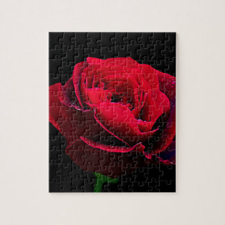 Valentines Day Red Rose Puzzles