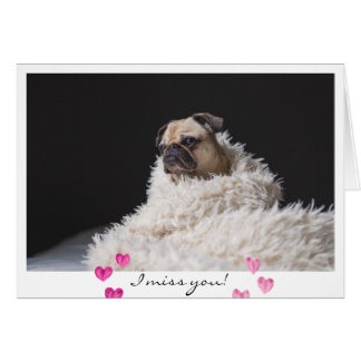 Valentine's Day Sad Pug Dog Photo I miss you Card
