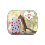 Valentines Day Squirrel Jelly Belly Candy Tins