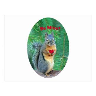 Valentine's Day Squirrel Postcard