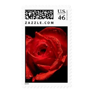 Valentine's Day stamp