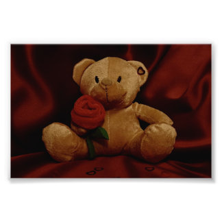 Valentine's Day Teddy Bear Photo Print