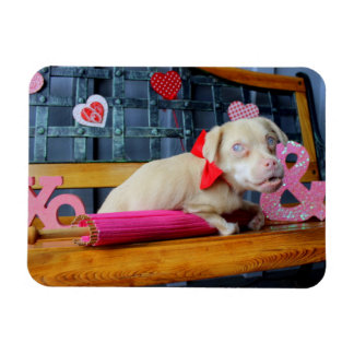 Valentines Day Tucker Magnet