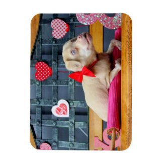 Valentine's Day TuckerWearsGoggles Magnets
