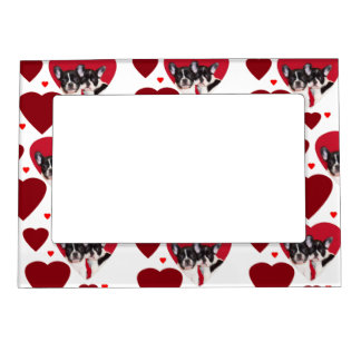 Valentine's French Bulldogs Magnetic Frames