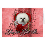 Valentines - Key to My Heart - Bichon Frise Greeting Card