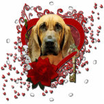 Valentines - Key to My Heart - Bloodhound - Penney Photo Cut Outs