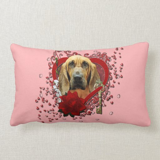 Valentines - Key to My Heart - Bloodhound - Penney Pillows