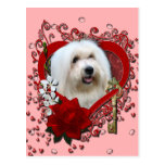 Valentines - Key to My Heart - Coton de Tulear Postcards
